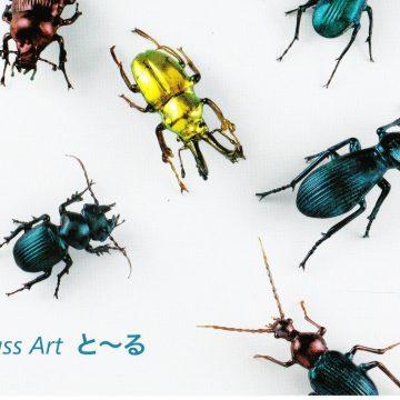 ガラスの昆虫作品展