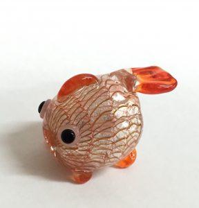 2016.6金魚